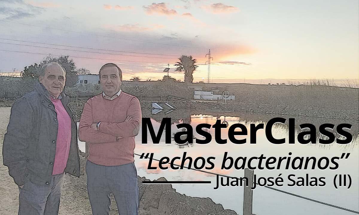 2ª entrega de la masterclass sobre lechos bacterianos impartida por Juan José Salas.